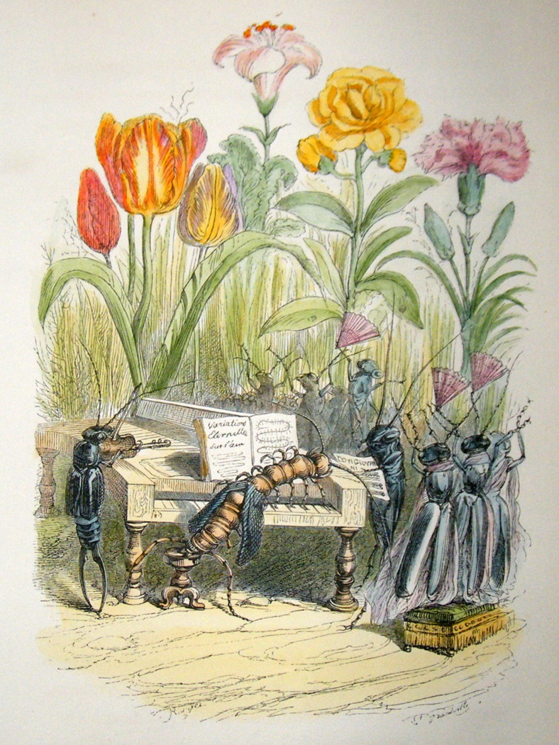 http://www.albion-prints.com/ekmps/shops/albionprint/images/grandville-des-animaux-1842-hand-col-print.-insects-playing-music-to-flowers-%5B2%5D-53816-p.jpg