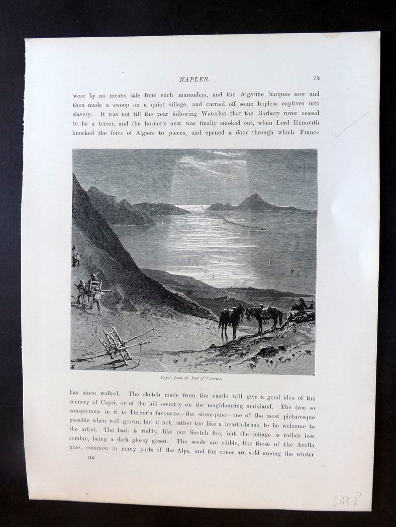 Picturesque Europe C1875 Antique Print. Capri from the Foot of Vesuvius, Italy