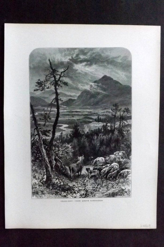 Picturesque Europe 1870s Antique Print. Craig-Dhu: From above Kinguissie