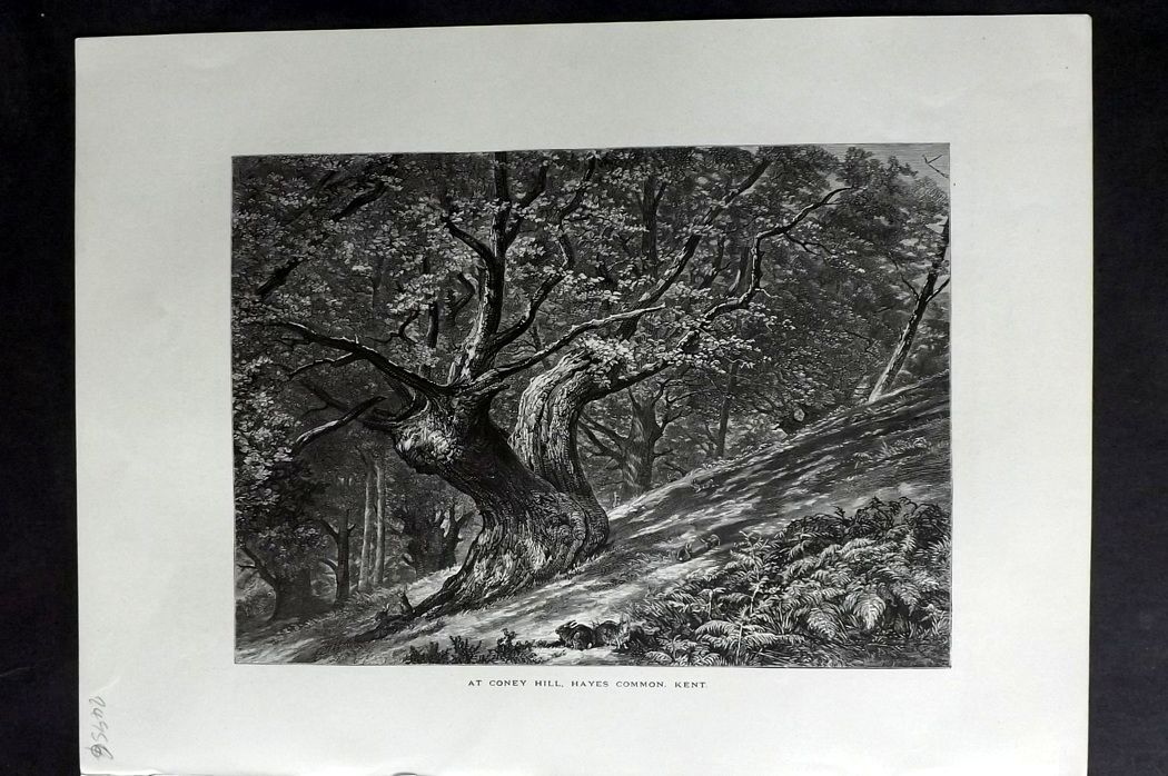 Picturesque Europe 1870s Antique Print. Coney Hill, Hayes Common, Kent